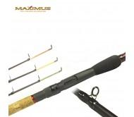 Dugninė meškerė MAXIMUS Adventure 60-120 g.