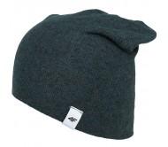 Kepurė 4F H4Z18 CAM003